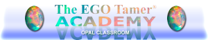 Opal Classroom at The EGO Tamer Academy