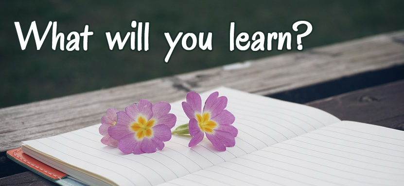 What will you learn in The EGO Tamer® Academy?