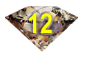 Chocolate Diamond-12