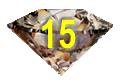 Chocolate Diamond-15