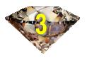 Chocolate Diamond-3