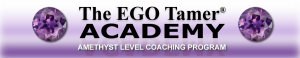 Amethyst Level Coaching at The EGO Tamer Academy