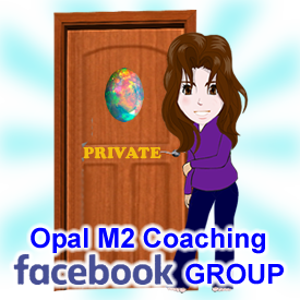 Private Facebook Group for Opal M2 Coaching