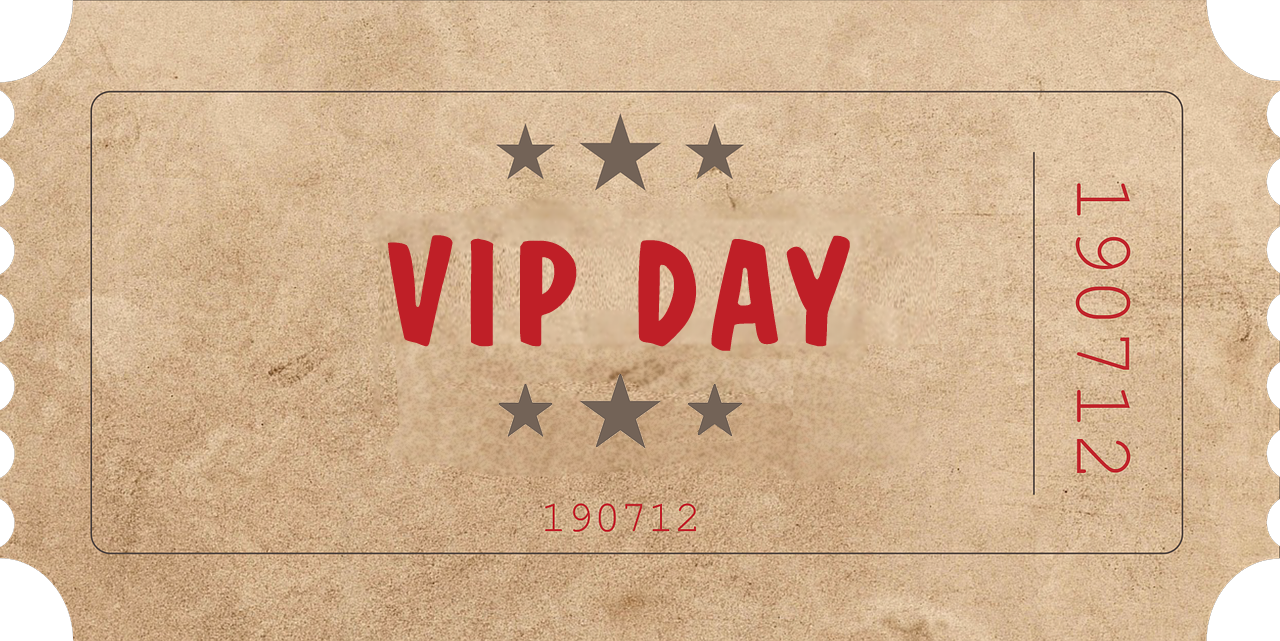 VIP Day Ticket